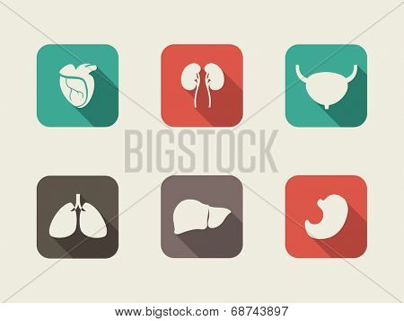 Medical Infographic Element