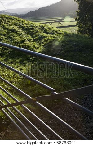 Metal gate on field, Yorkshire Dales, Yorkshire, England