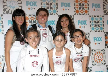 LOS ANGELES - JUL 20:  Top Chef Junior Contestants at the FOX TCA July 2014 Party at the Soho House on July 20, 2014 in West Hollywood, CA