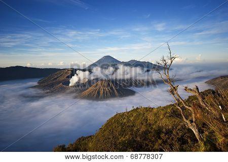 Mt. Bromo, Indonesia