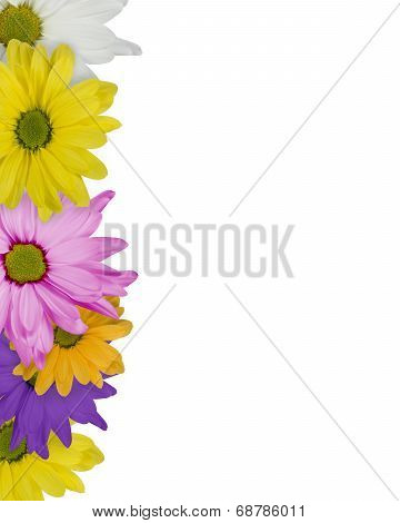Vertical Bordered Daisy Background
