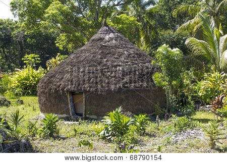 Primitive Hut