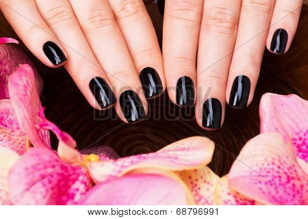 Beautiful women hands with black manicure after Spa procedures - Spa treatment concept
