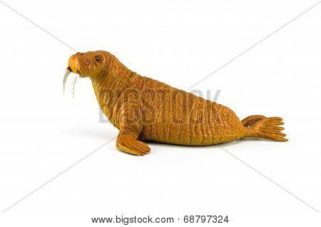 Walrus Toy