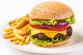 picture of hamburger  - Delicious Hamburger with French Fries - JPG