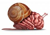 image of stagnation  - Thinking slow and brain function problems concept as a human organ in a snail shell as a mental health symbol for struggling with memory and dementia as alzheimer or neurology challenges - JPG