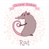 picture of rats  - Chinese Zodiac  - JPG