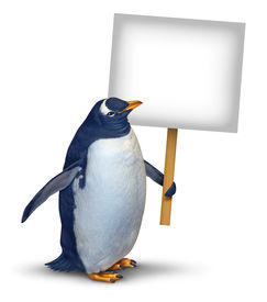 picture of spayed  - Penguin holding a blank card sign as a cute polar bird with a smiling happy expression supporting and communicating a message pertaining to animal welfare and wildlife on an isolated white background - JPG