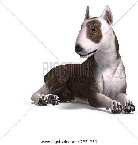 Animal_dog_bullterrier