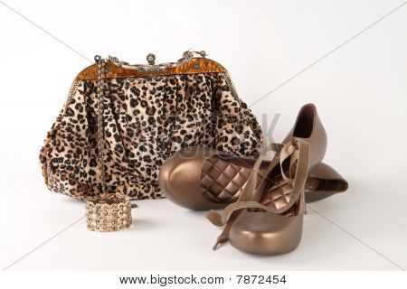 Handbag And Shoes