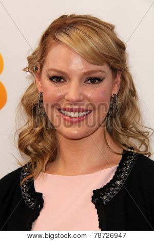 LOS ANGELES - JAN 11:  Katherine Heigl at the