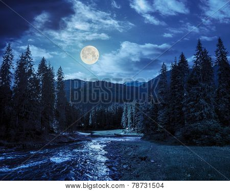 Mountain River In Pine Forest At Night