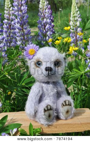 Teddy-bear Chupa On A Little Board Among Flowers