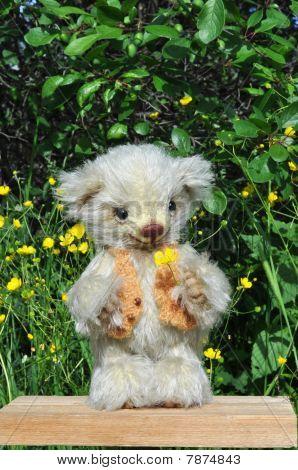 Teddybär Sema auf ein wenig Board unter Blumen unter grünen plum