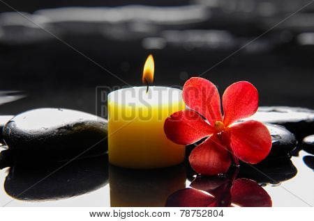 Beautiful red orchid with candle and therapy stones