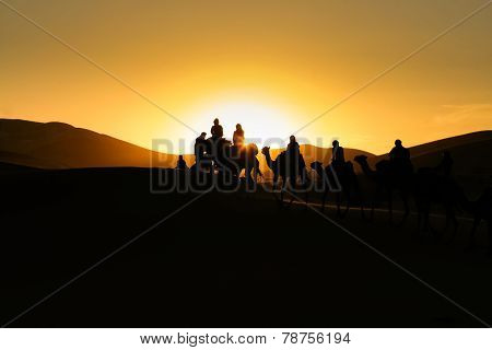 Silhouettes Of Tourists Riding Camels