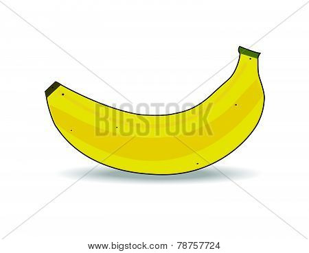 Vector Ripe banana isolated