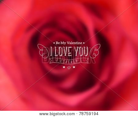 I Love You Text on Blurred Background with Rose Flower.