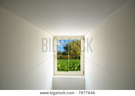Window And Nature