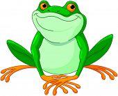 image of cute frog  - Illustration of very cute Frog  - JPG