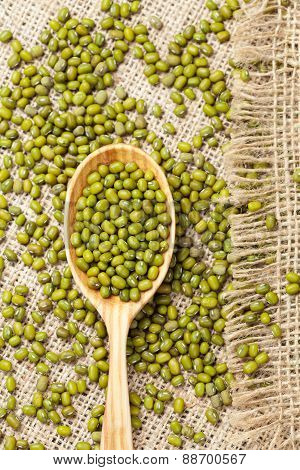 Wooden spoon with heap of raw green organic mung beans