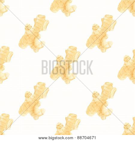Seamless watercolor pattern with ginger on the white background, aquarelle.  Vector illustration. Ha