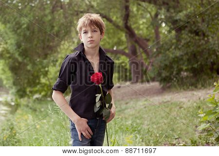 Teenager Holding  Rose In Her Hand,