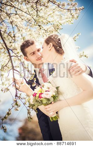 Groom Bride Flowered Trees
