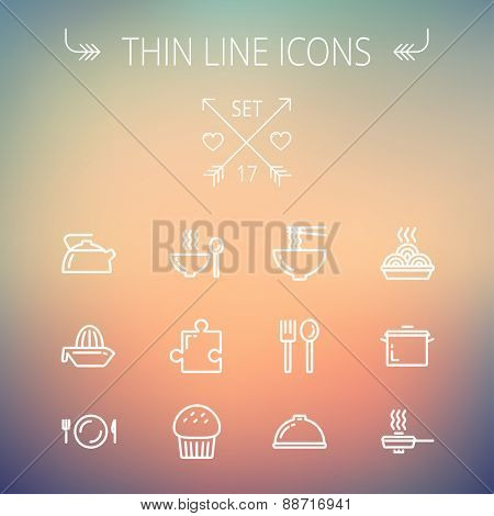 Ecology thin line icon set for web and mobile. Set includes- cupcakes, spoon and fork, plate, kettle, casserole, hot meal, frying pan icons. Modern minimalistic flat design. Vector white icon on