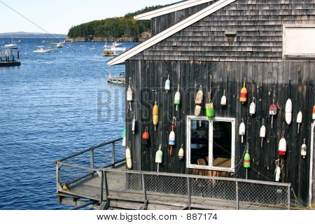 Lobster Shed