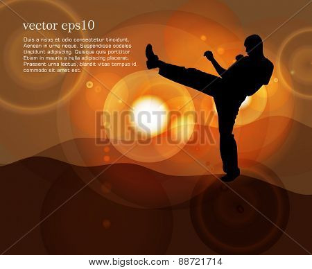 Karate. Vector illustration