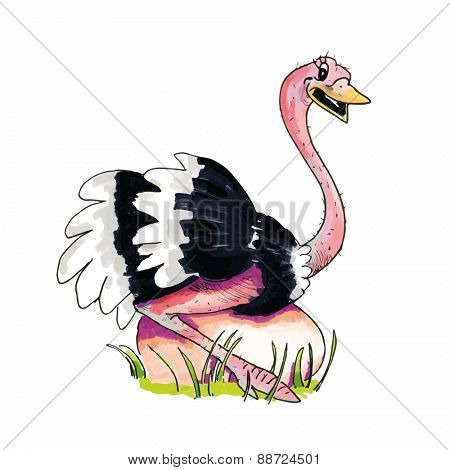 Cartoon of hand drawn Ostrich sitting on egg isolated over white background
