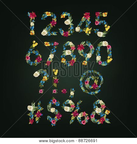 Numbers, Vector Colorful Flower Font For Your Design.