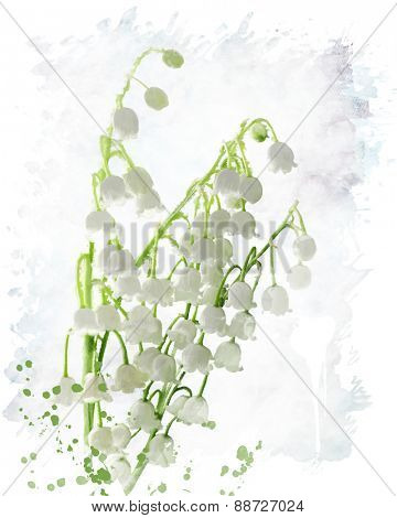 Digital Painting Of Lily Of The Valley