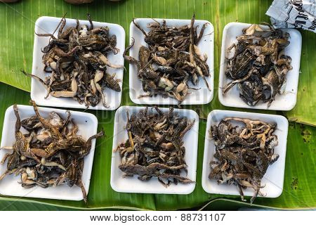 Cooked frogs in a tropical asian market in Thailand