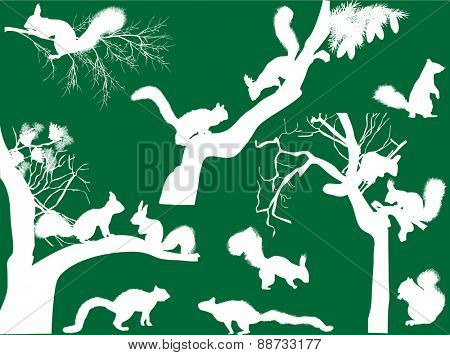 illustration with squirrels isolated on green background