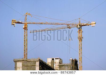 Working Crane