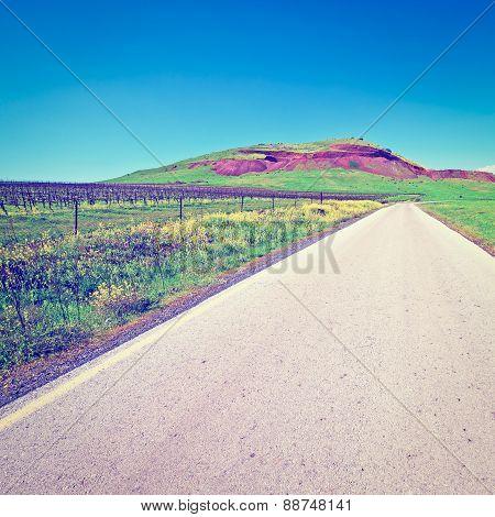 Road In Golan