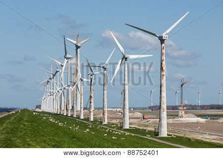 Construction Of A Windfarm Along The Dutch Coast