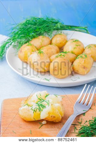 Young Potatoes Cooked In Jacket With Dill