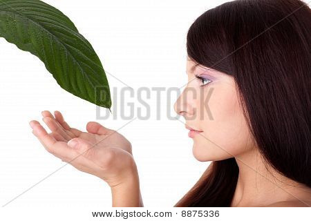 Young Woman And Fresh Leaf Of A Plant