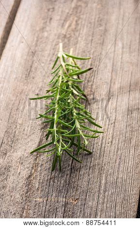 Sprigs Of Fresh Rosemary On The Table