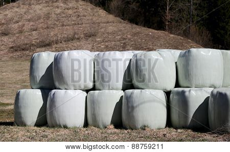 Hay Bales Wrapped In Cellophane In Farm Field