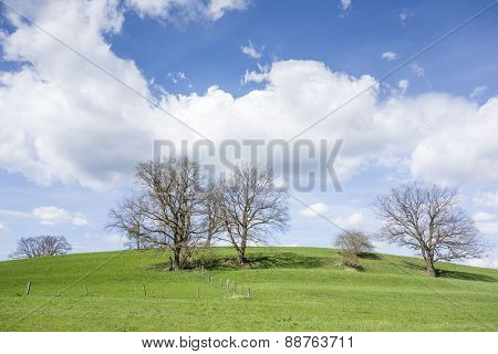 An image of a lanscape with trees and clouds