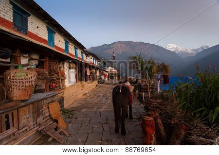 Traditional House In Himalaya Mountain Village With Annapurna I Himalaya Mountains In Background