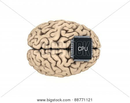 Human brain and microprocessor.