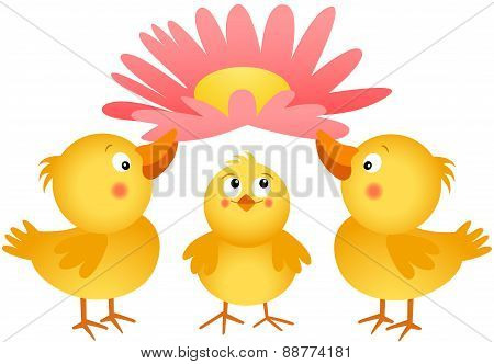 Three little chicks with flower