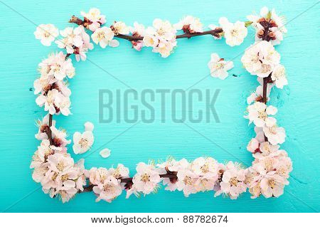 Wedding background. Flowering branch of cherry frame