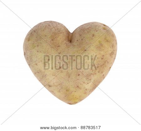 Heart shaped potato spud, studio shot
