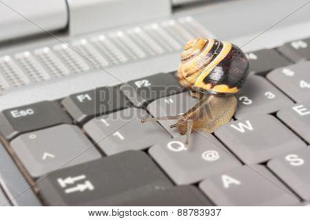 Slow computer network